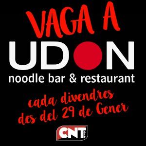 banner-vaga-udon